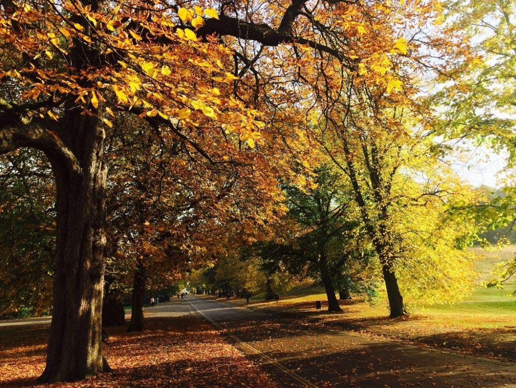 clima reino unido outono
